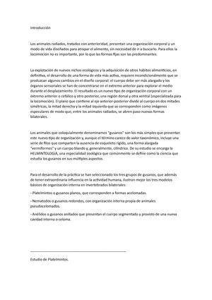 Gusanos - Apuntes de clase 8-9-10 - 100410: Zoología - StuDocu