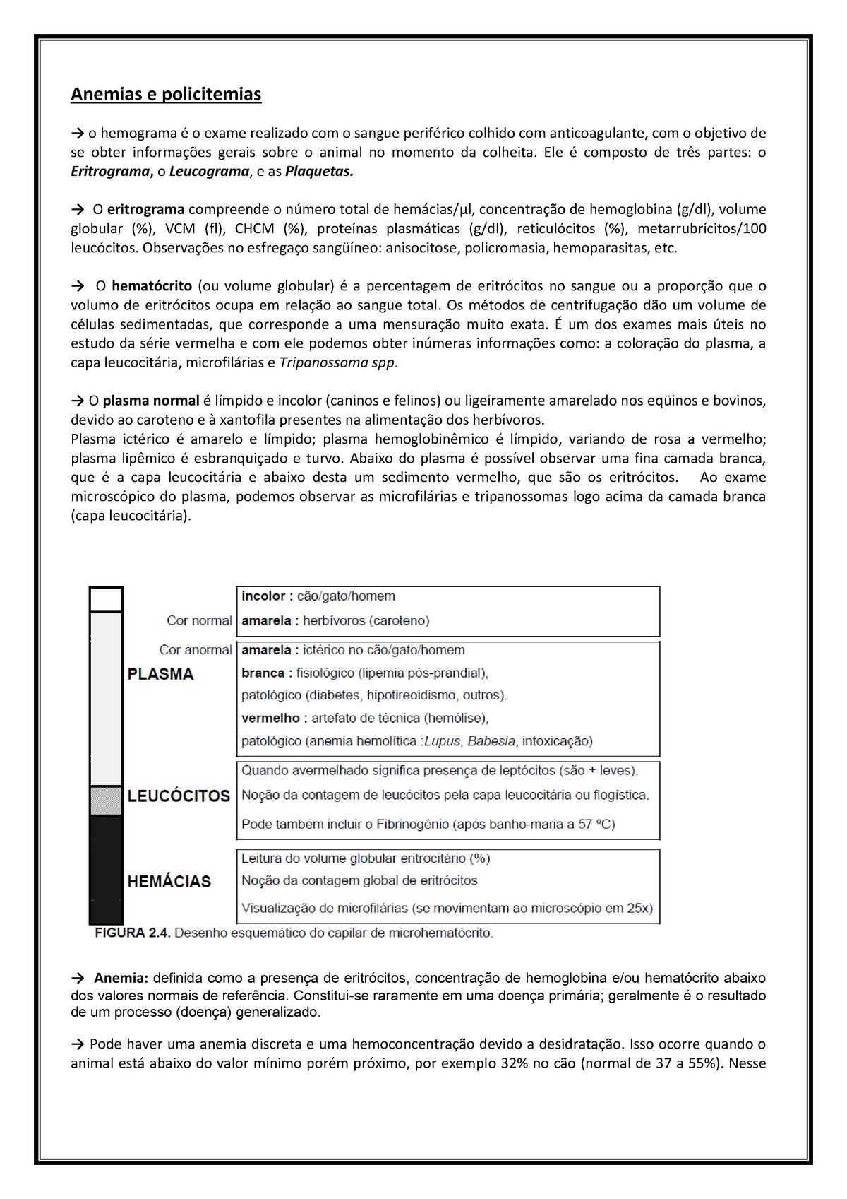 valor normal da hemácias na urina