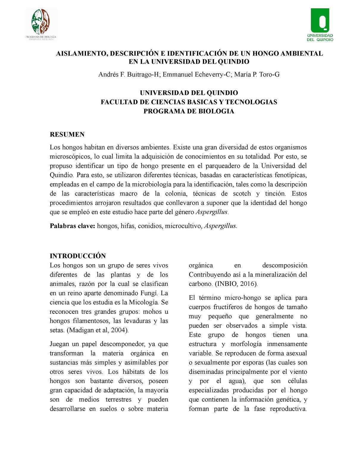 Informe Final De Hongos Microbiología Uniquindio Studocu