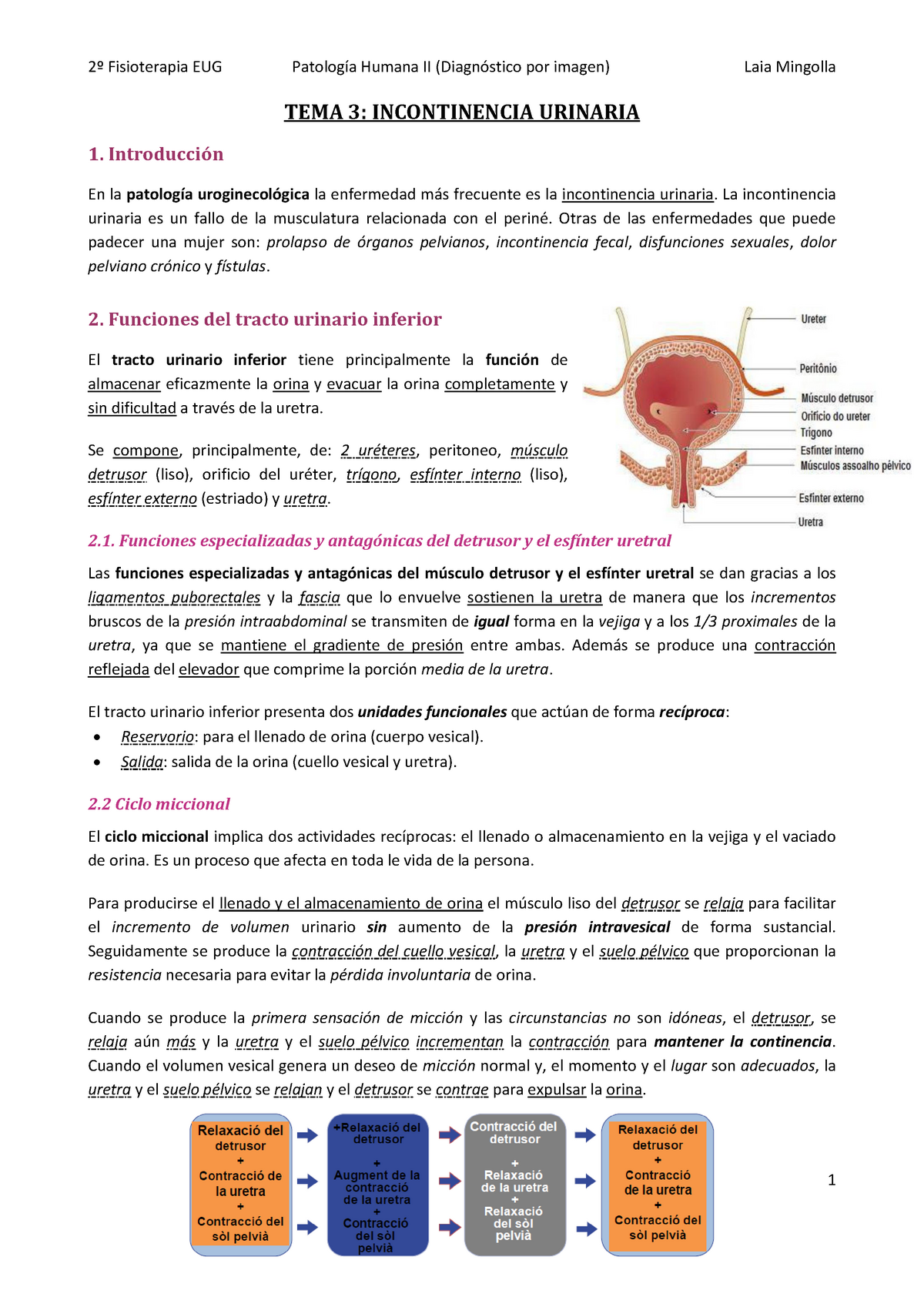 frecuencia frecuente de micción en diahria urinaria