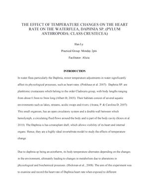 daphnia heart rate essay
