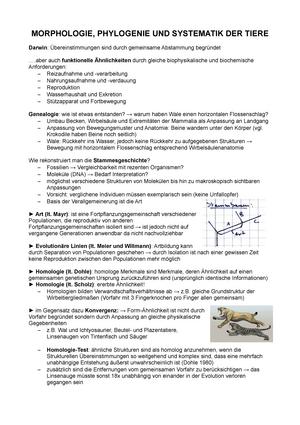 MPS Tiere Zusammenfassung (Abb Seite 5 Trophozoid und Gonozoid ...