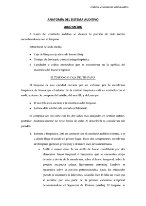 Apuntes - Anatomía del sistema auditivo - G2041343: Anatomía e ...