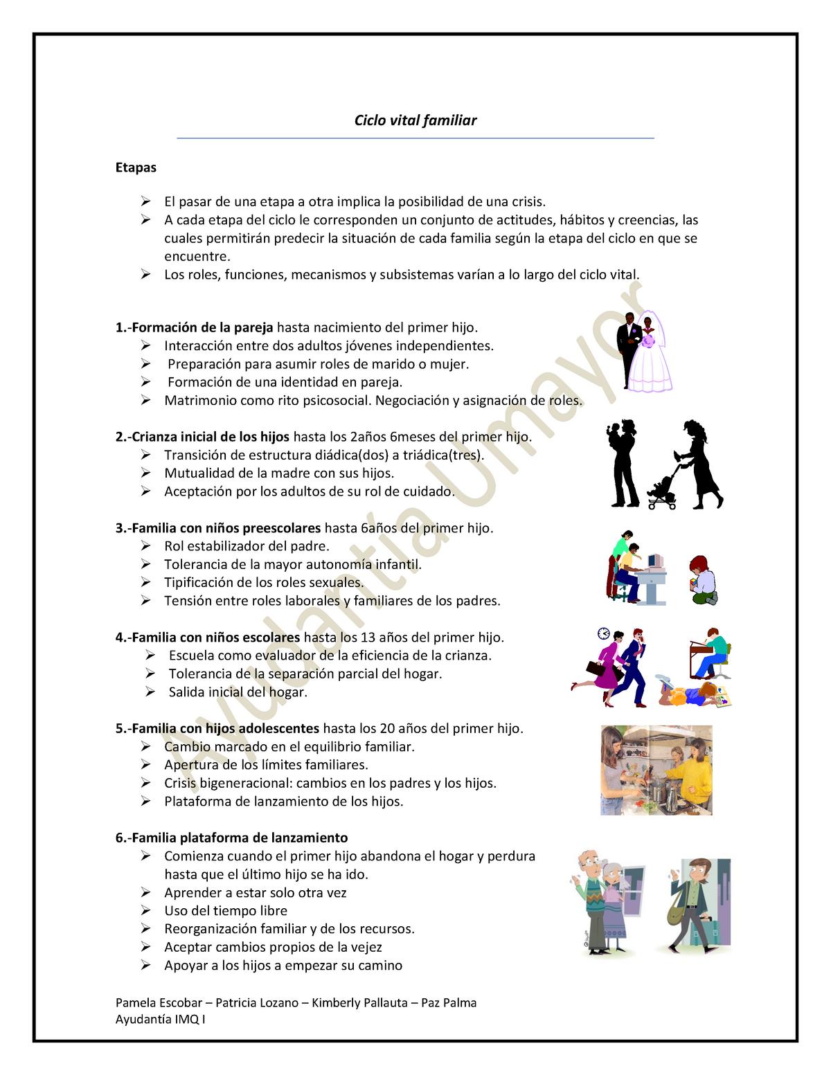01 Ciclo Vital Familiar Semiología U Mayor Studocu