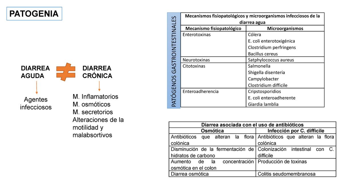 etiología del cólera y patogénesis de la diabetes
