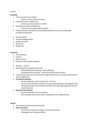 Werkgroep uitwerkingen - 7-8 - Systeemfysiologie - StudeerSnel