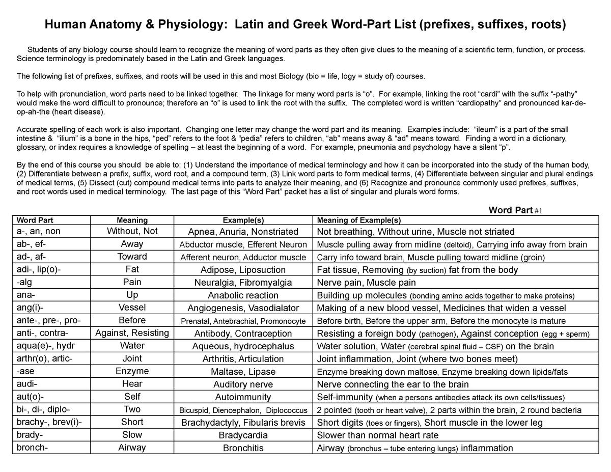 Anatomical Prefixes and Suffixes - IMED1001 - UWA - StuDocu
