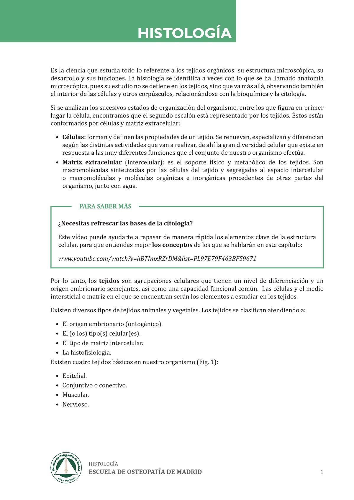 Examen 3 Abril Preguntas Y Respuestas Histología Udeg