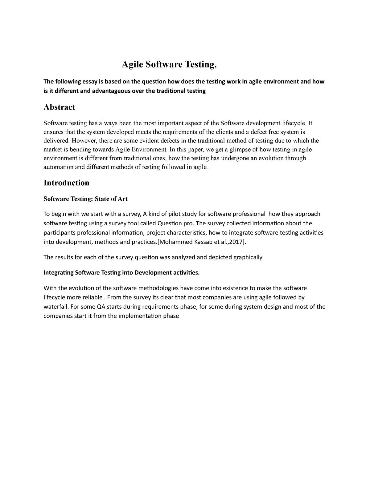 short essay on software engineering