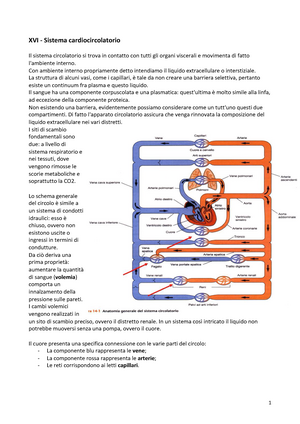 Сколько нужно спать гипертоникам - Pressione arteriosa Rowan