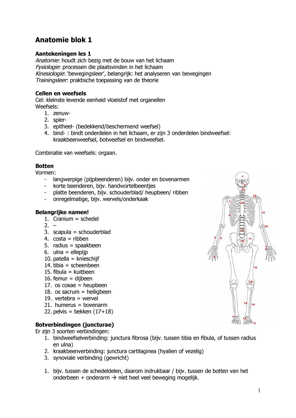 College Aantekeningen Colleges 1 Tm 7 Anatomie Blok 1