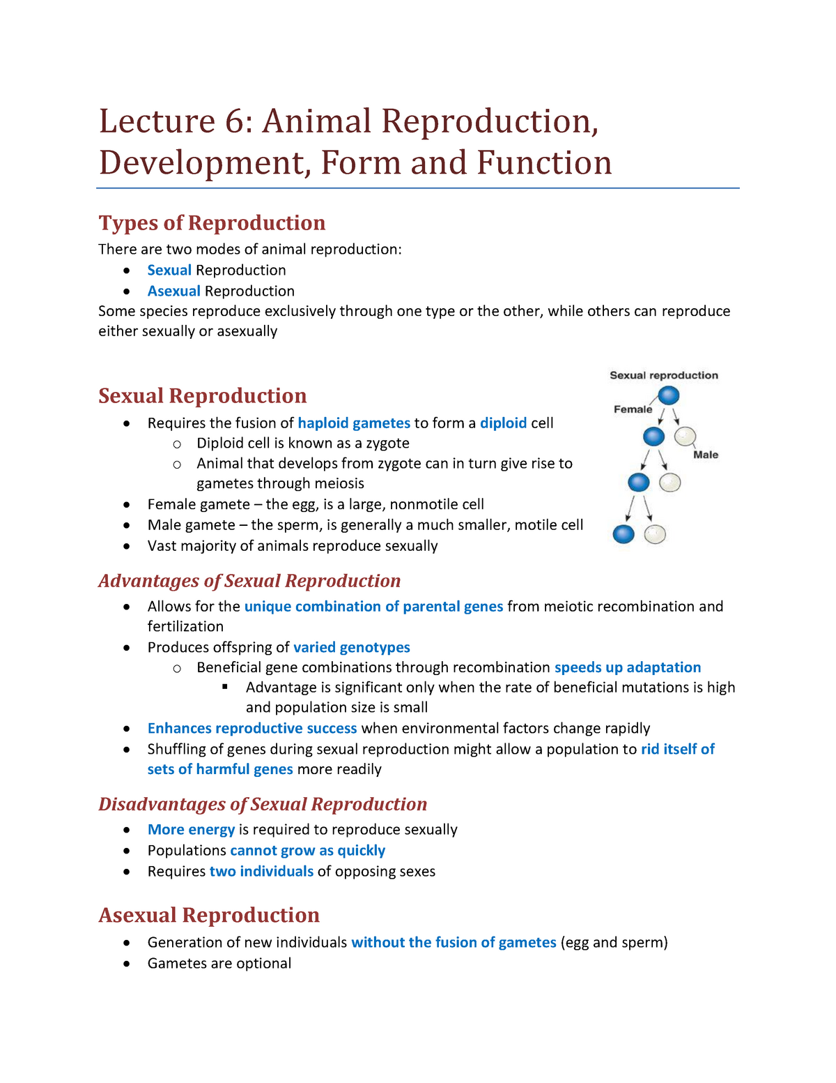 Lecture 6 - Reproduction, Development, Form and Function - BIOL 1030 ...