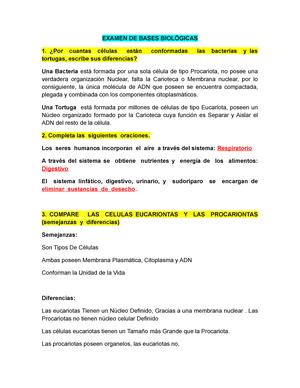 Examen De Muestra Práctica Junio 2015 Preguntas Y