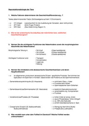 Groß Bartending Setzt Proben Fort Ideen - Dokumentationsvorlage ...