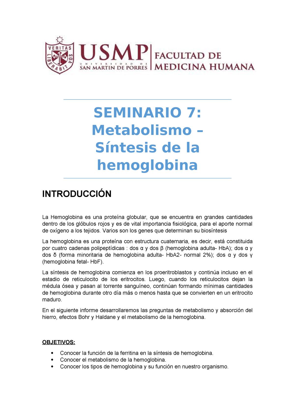 6 Hemoglobina Fisiología Humana 101315 Usmp Studocu