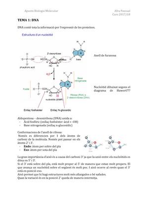 Biologia Molecular I Tècniques De Dna Recombinant Udg