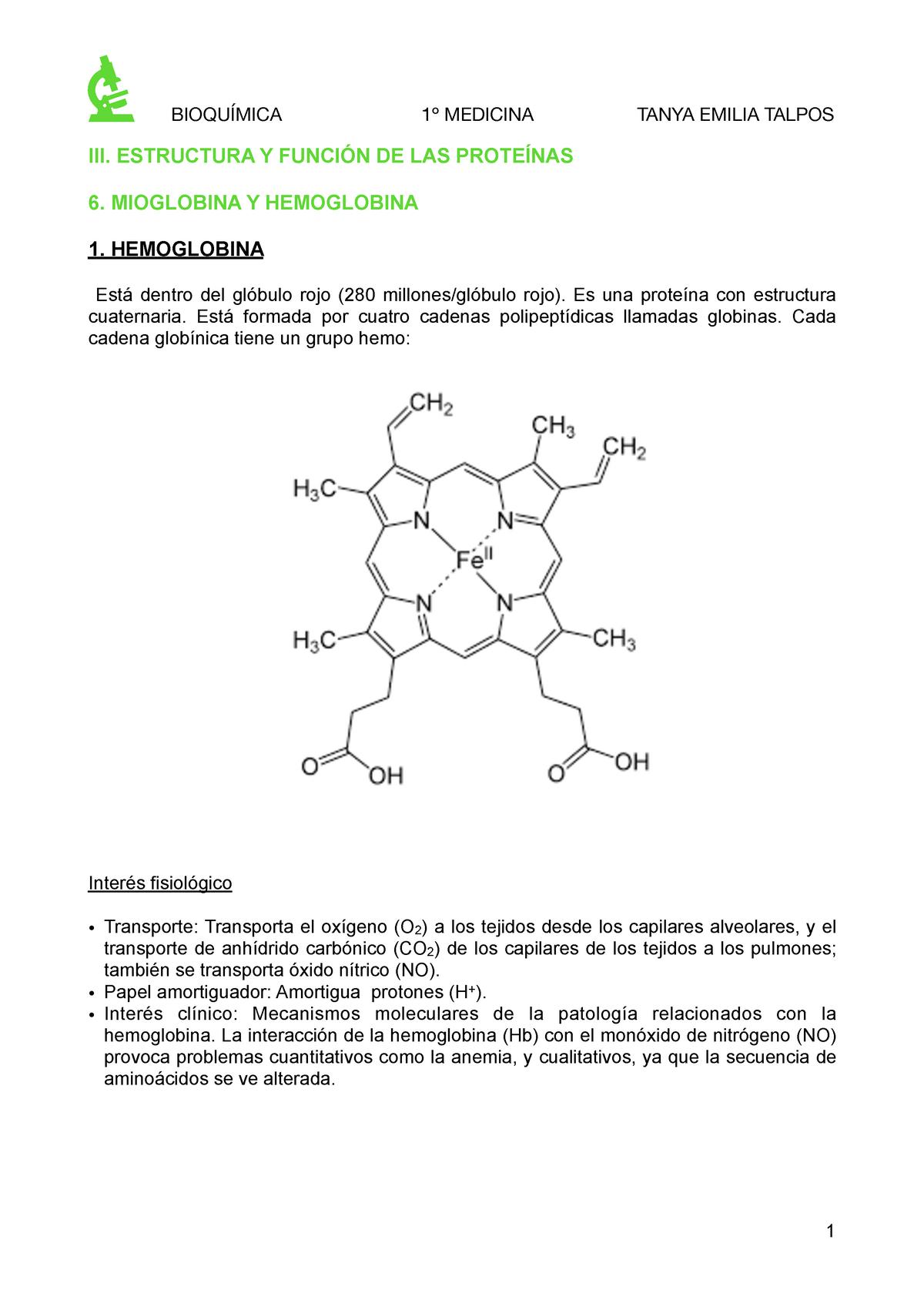Hemoglobina Y Mioglobina Bioquímica 215002 Uah Studocu