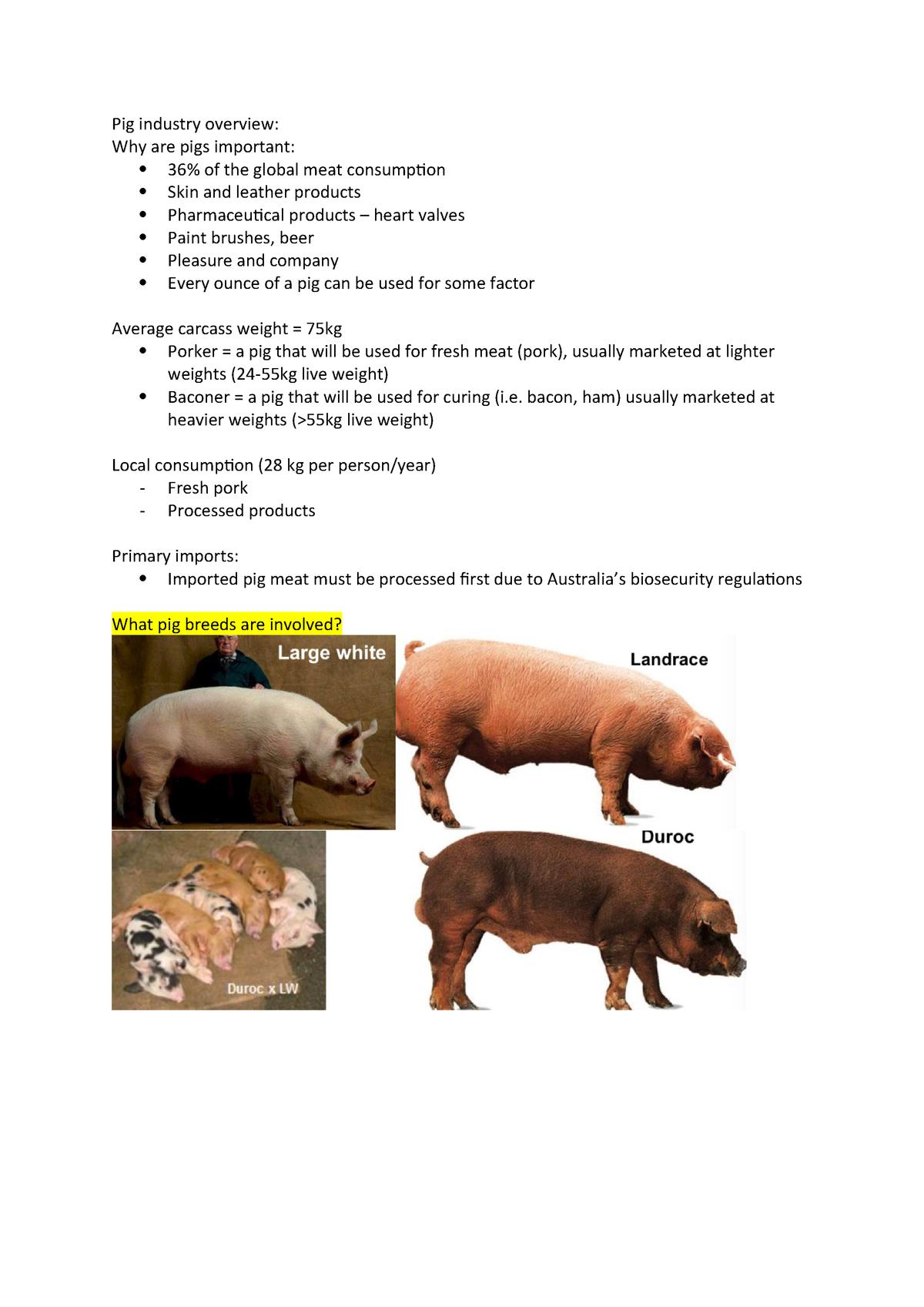 Pig industry overview - ANS101 - Murdoch - StuDocu
