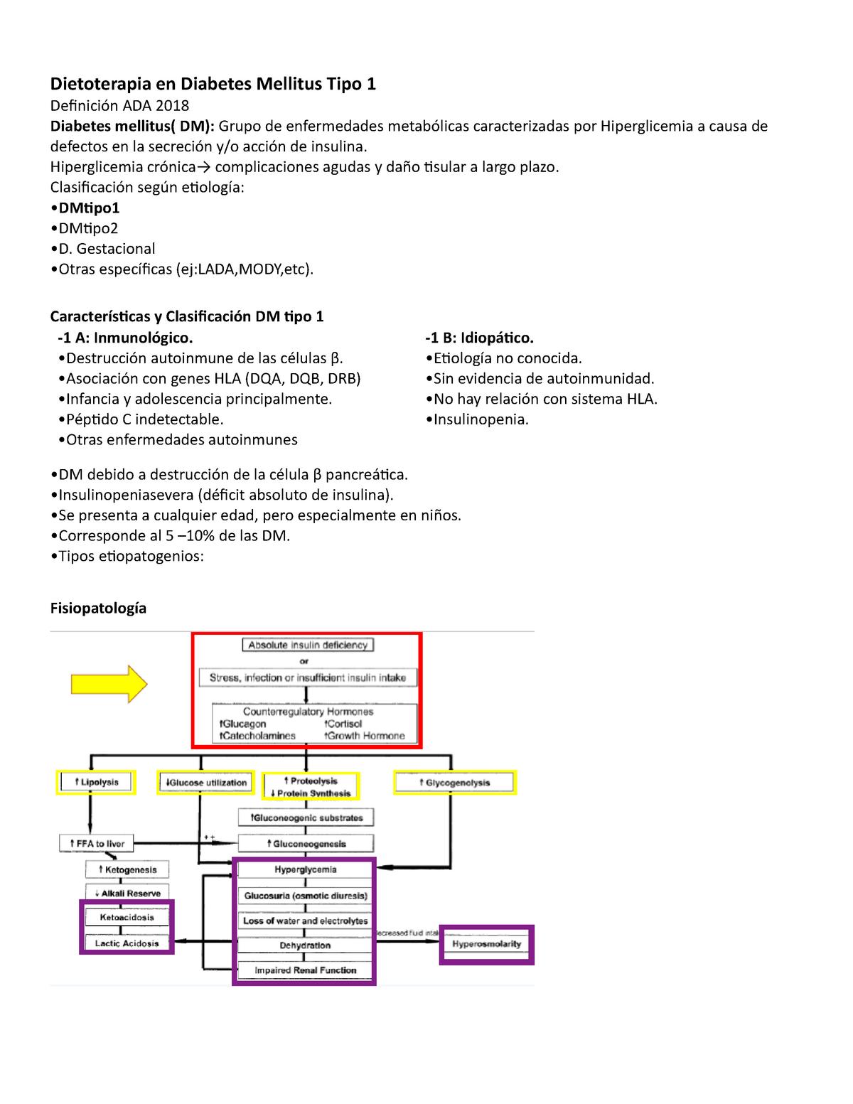 característica de la diabetes mellitus tipo 1 mediada por el sistema inmune