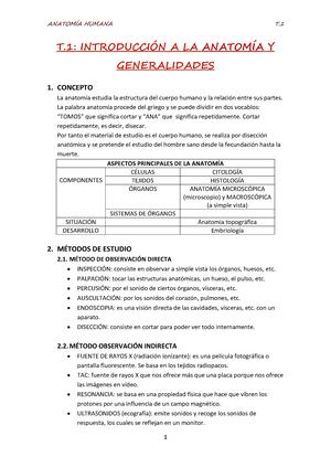 Resúmen completo Temas 1-14.pdf - Anatomía Humana