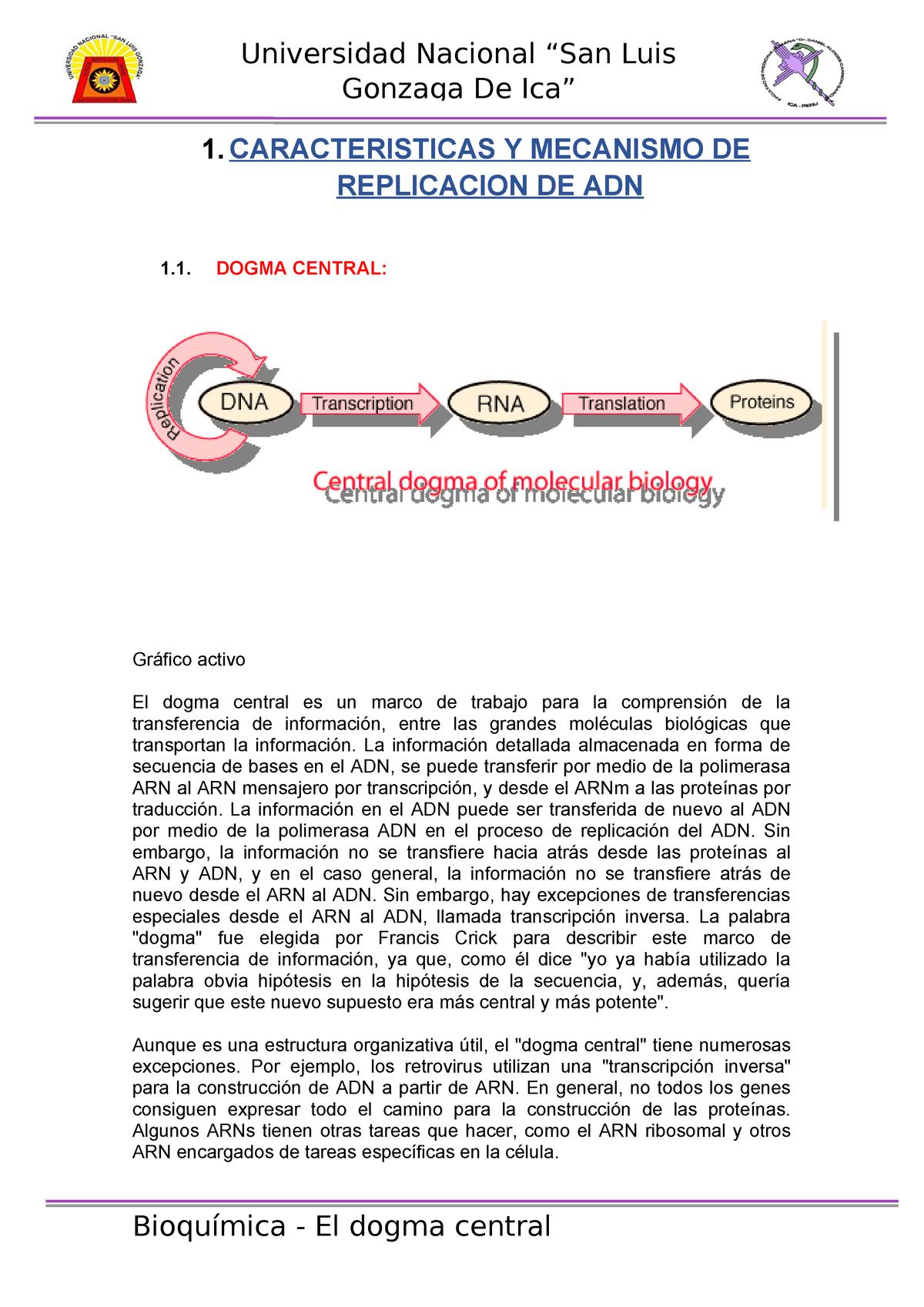 El Dogma Central Listo Medicina Humana Medicina Studocu