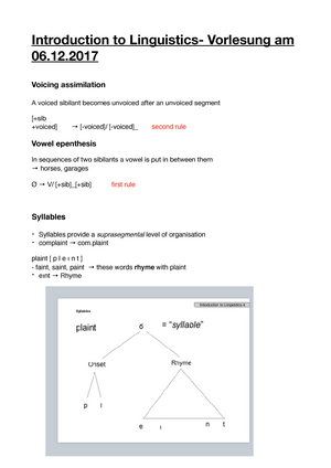 what is segmented assimilation