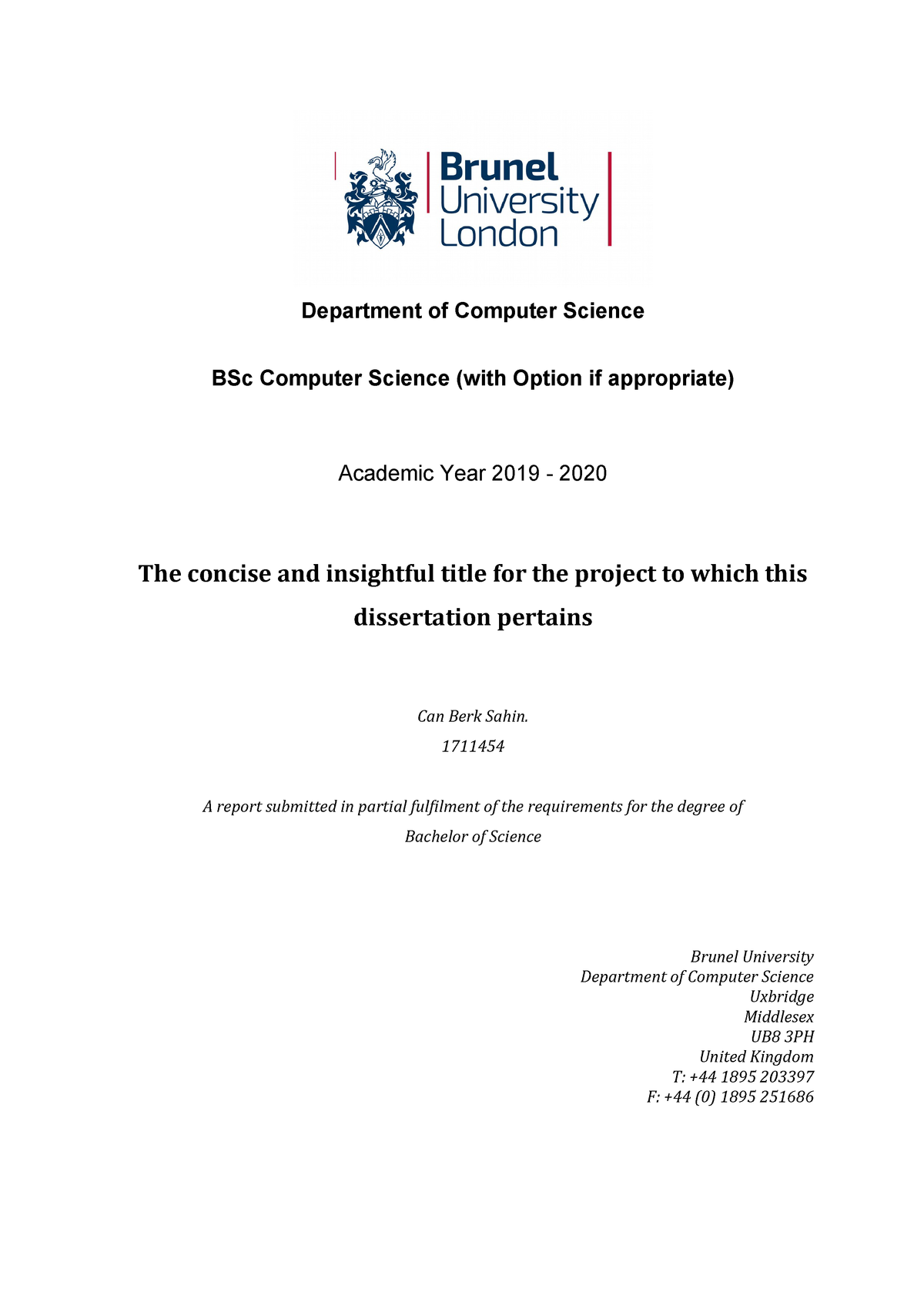 Bsc Dissertation Examples