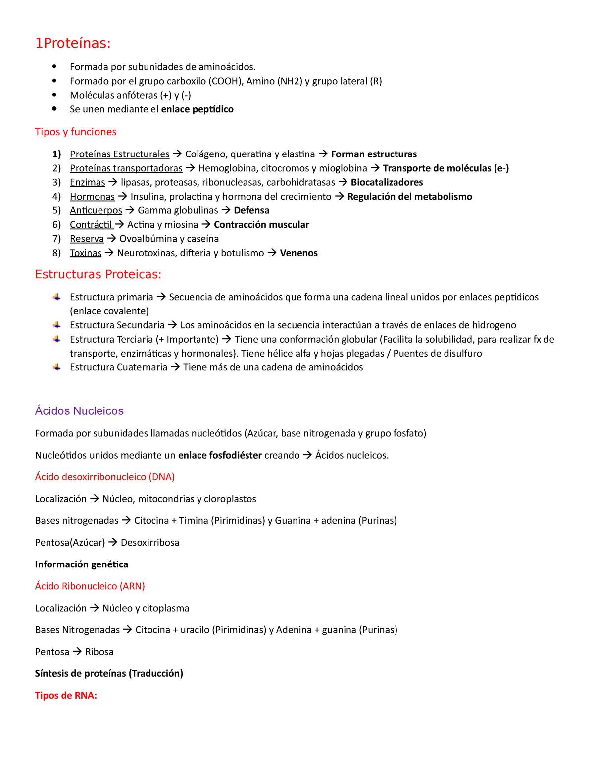 Resumen Ii Solemne Biologia Fisiologia Renal Y Digestiva