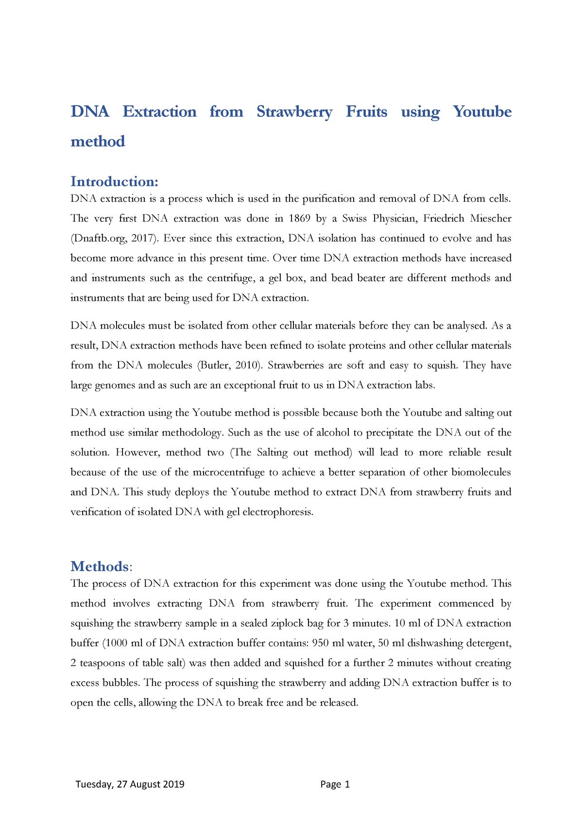 Gel Electrophoresis Worksheet Answers - Worksheet List