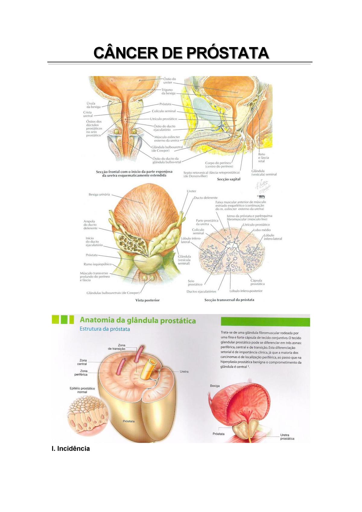 acido alfa linolenico prostata