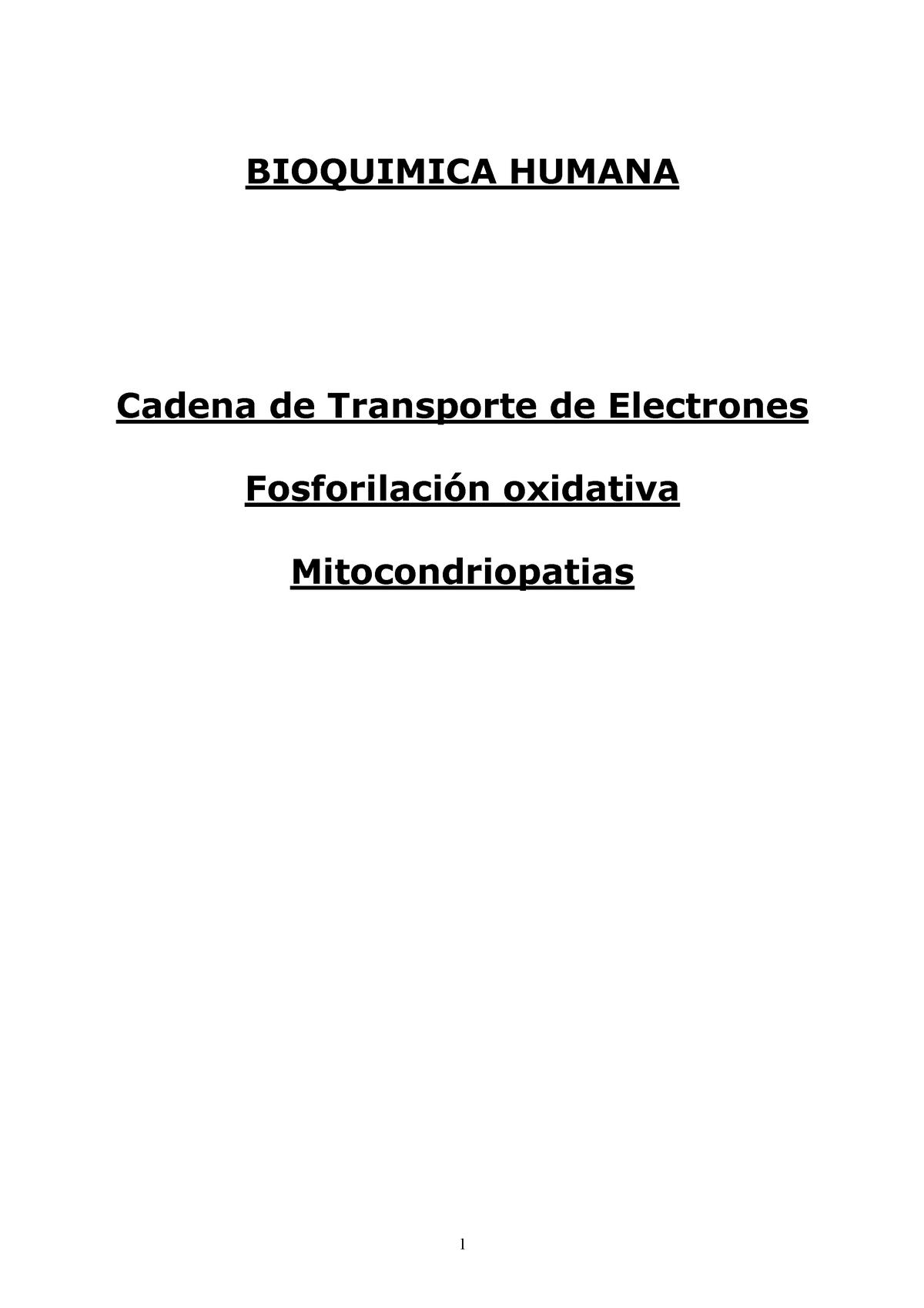 Cadena De Transporte De Electrones Bioquímica Aplicada