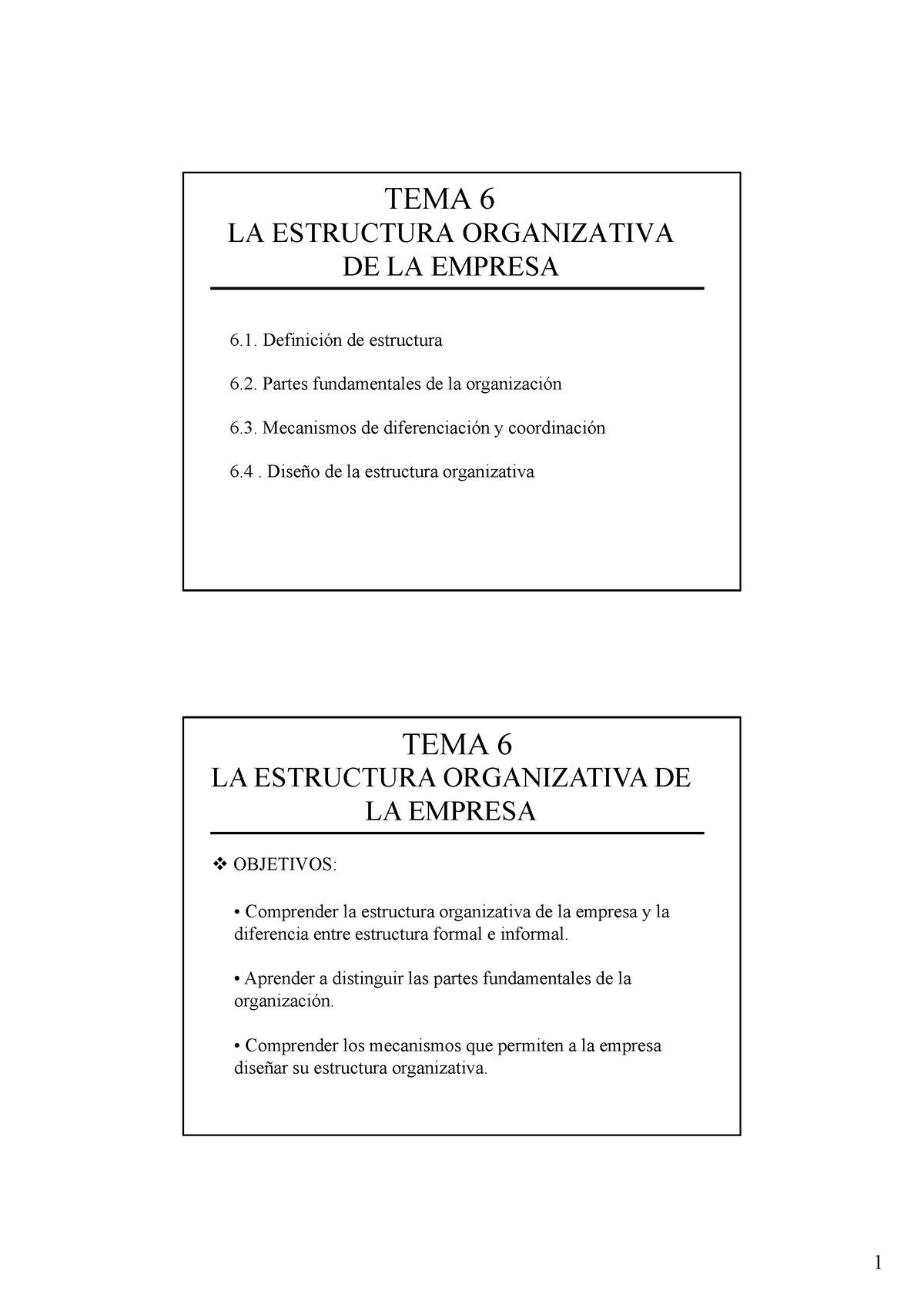 Apuntes Tema 6 Organización De Empresas 28501 Unizar