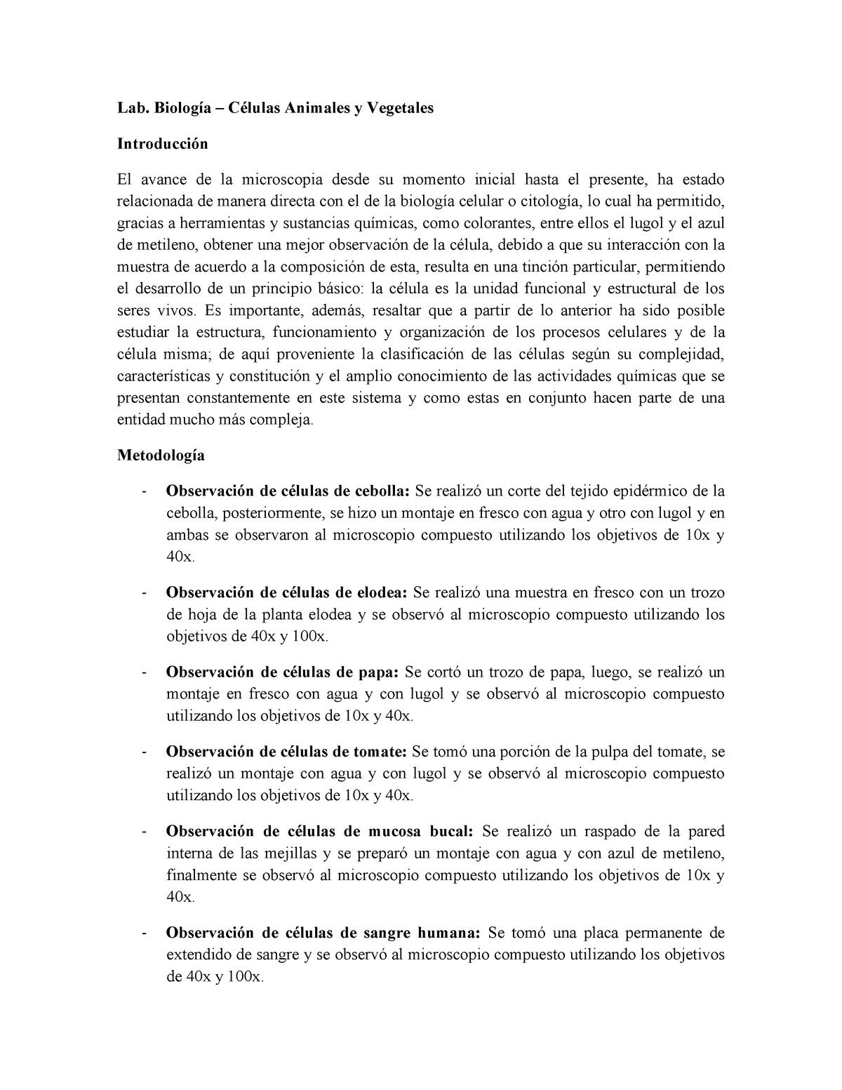 Informe Celulas Animales Y Vegetales 783 Udea Studocu