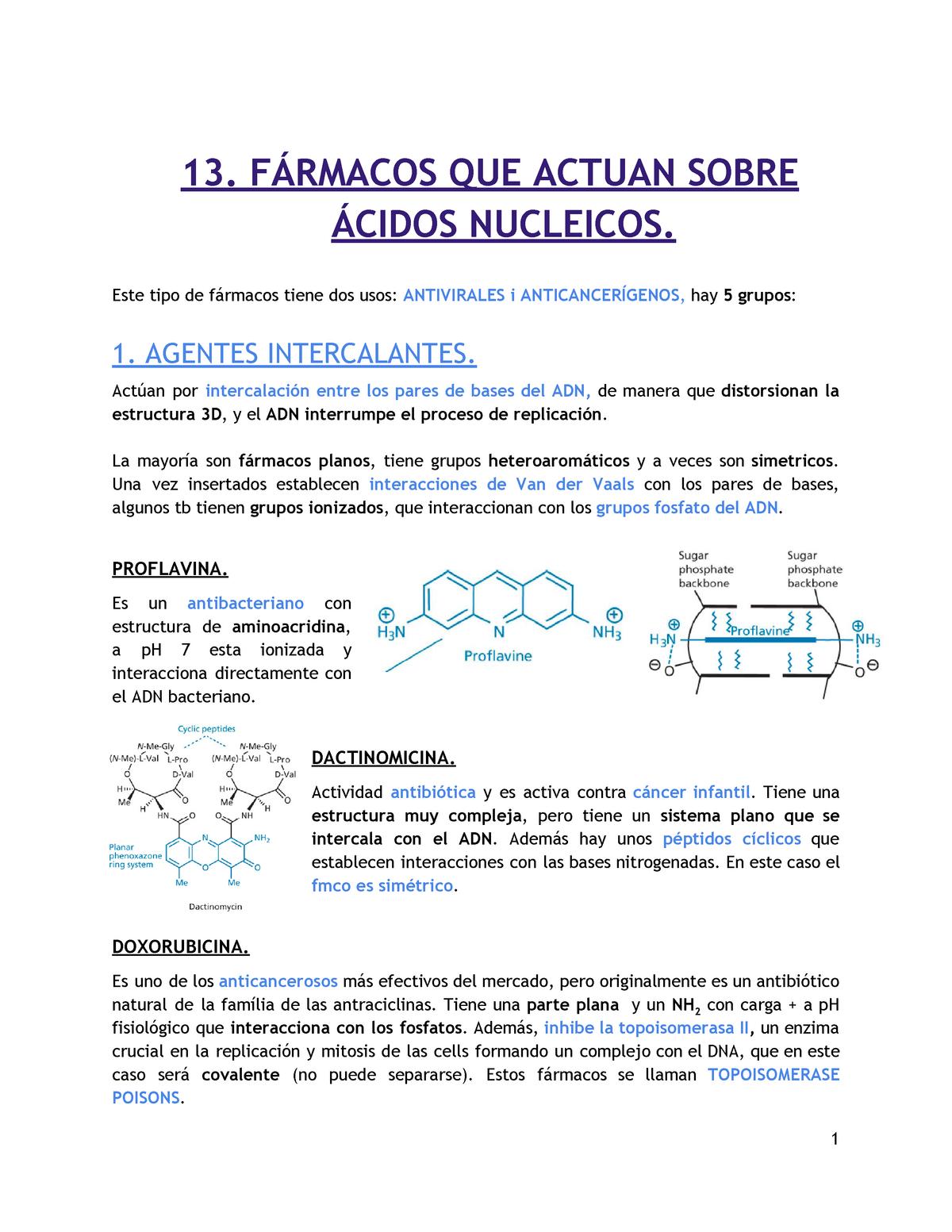 13 Fármacos Que Actúan Sobre ácidos Nucleicos 362272 Ub
