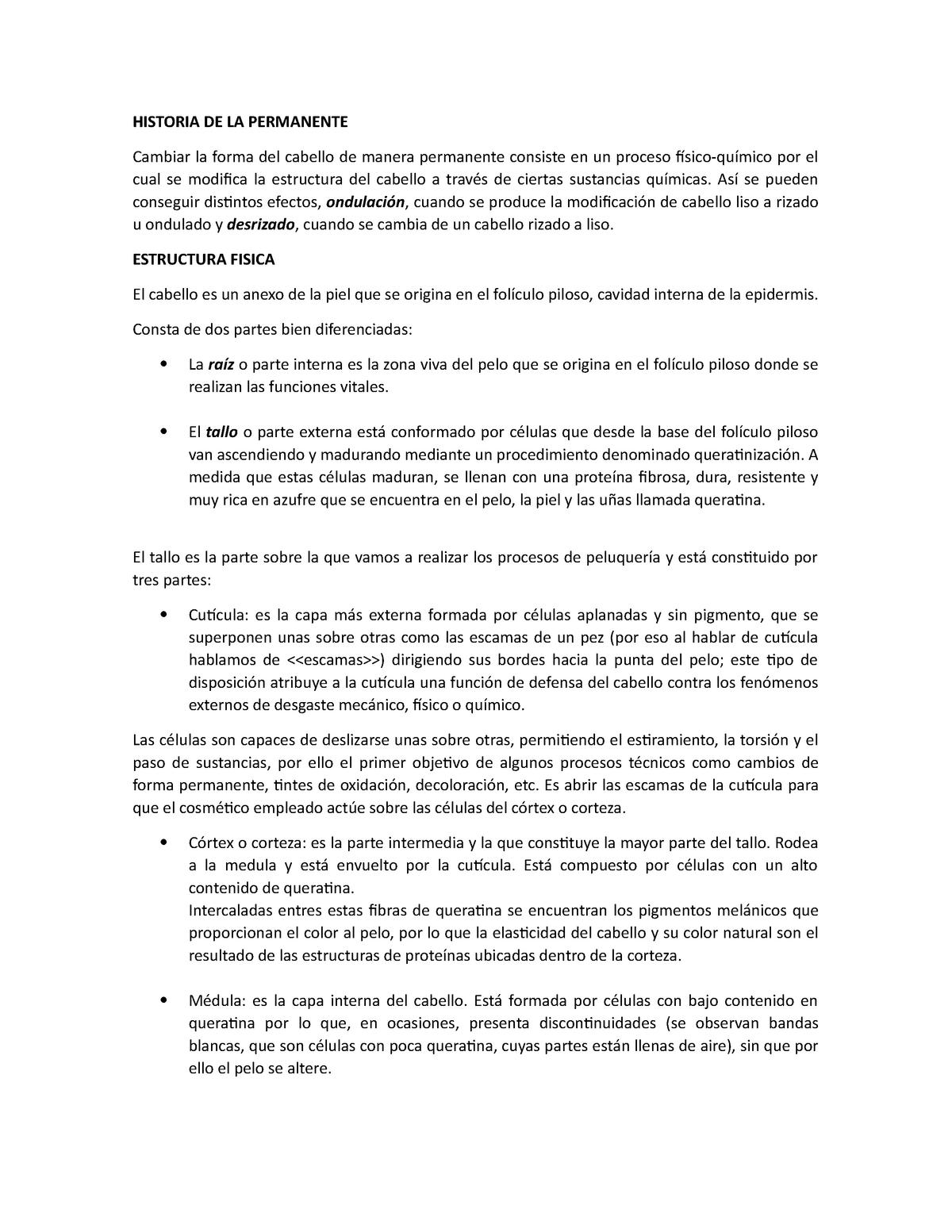 Historia De La Permanente Tecnología De Cosméticos 45910
