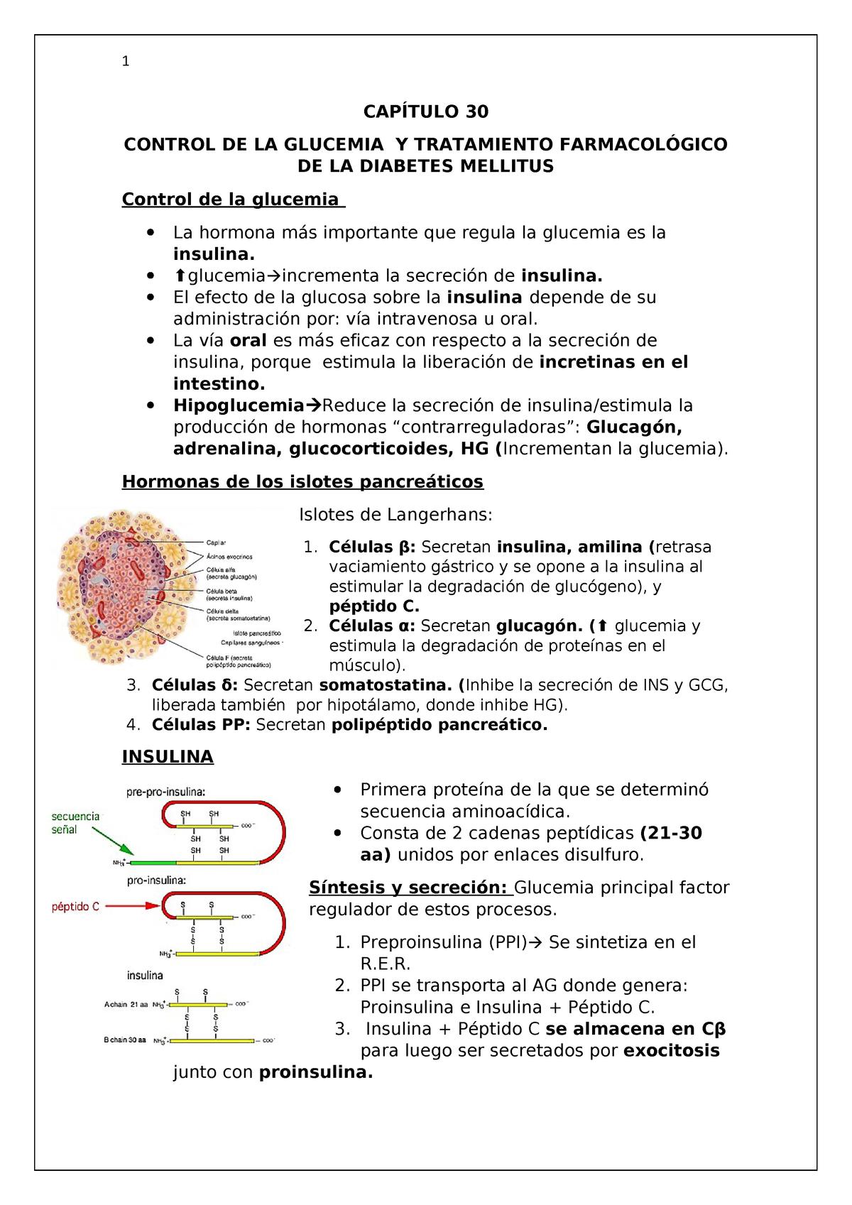 diabetes diuresis osmótica inducida por glucosa