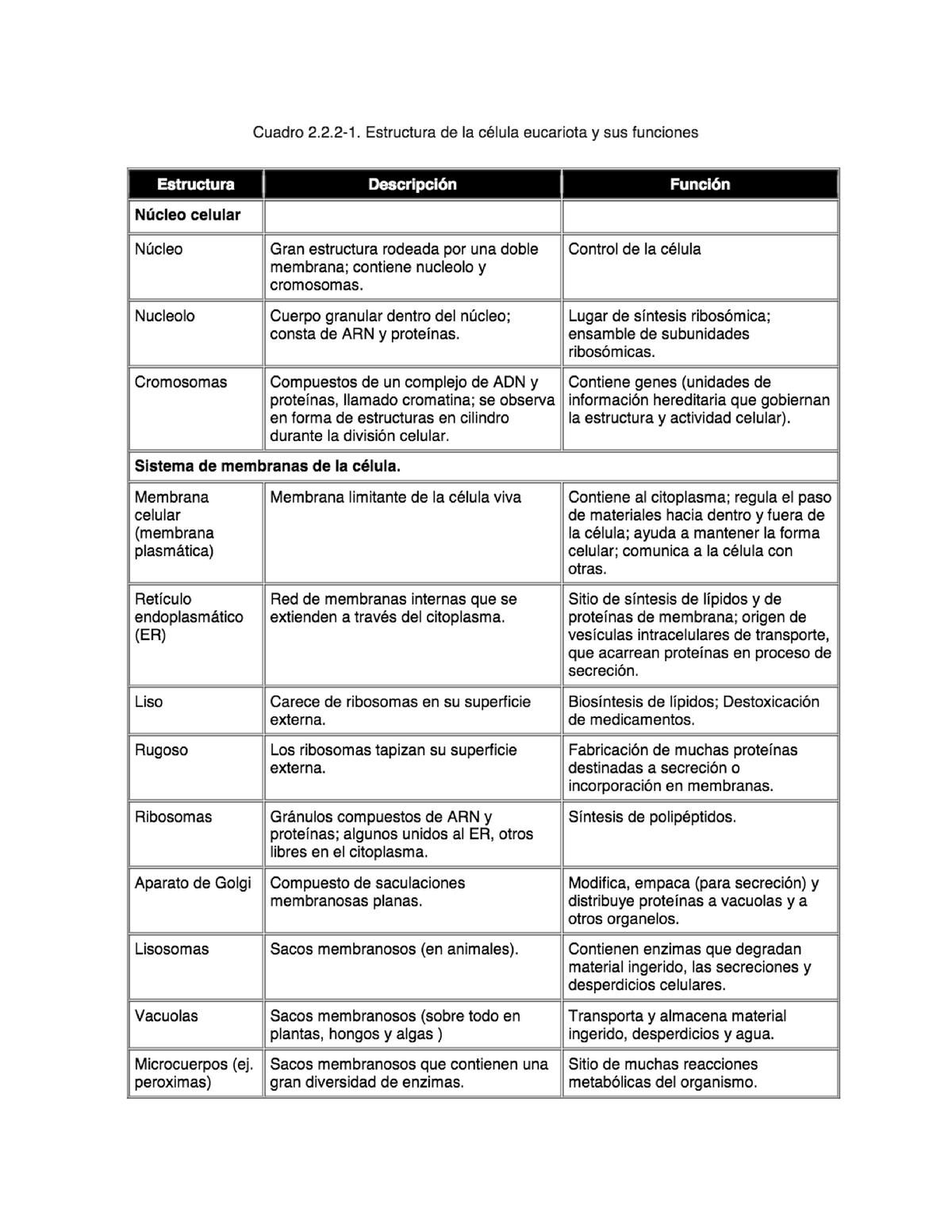 Cuadro 2 2 2 1 Estructura De La Célula Eucariota Y Sus Funciones Studocu