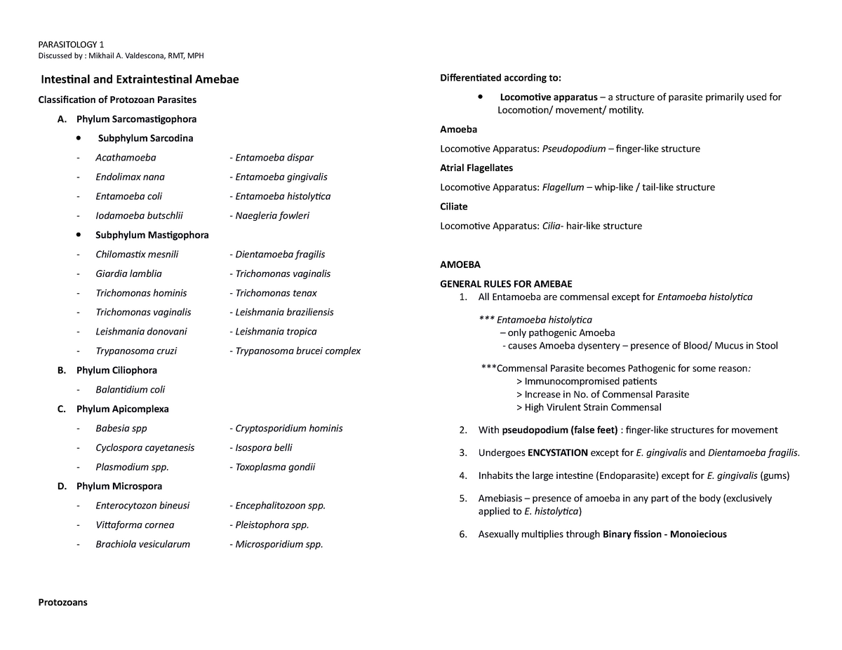 Intestinal and Extraintestinal Amebae - (MLS): Medical Technology