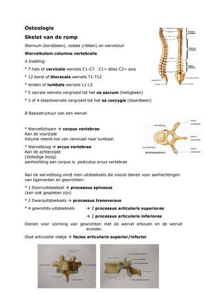 Osteologie wervels - Functionele Anatomie: Extremiteiten en romp