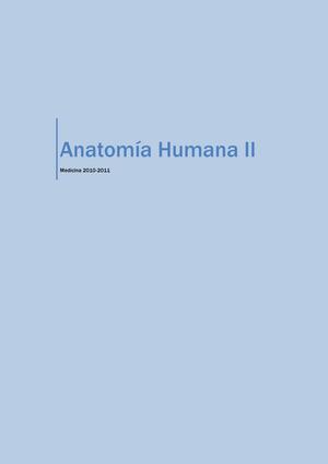 Anatomía Humana II - 215010: anatomía humana ii - StuDocu
