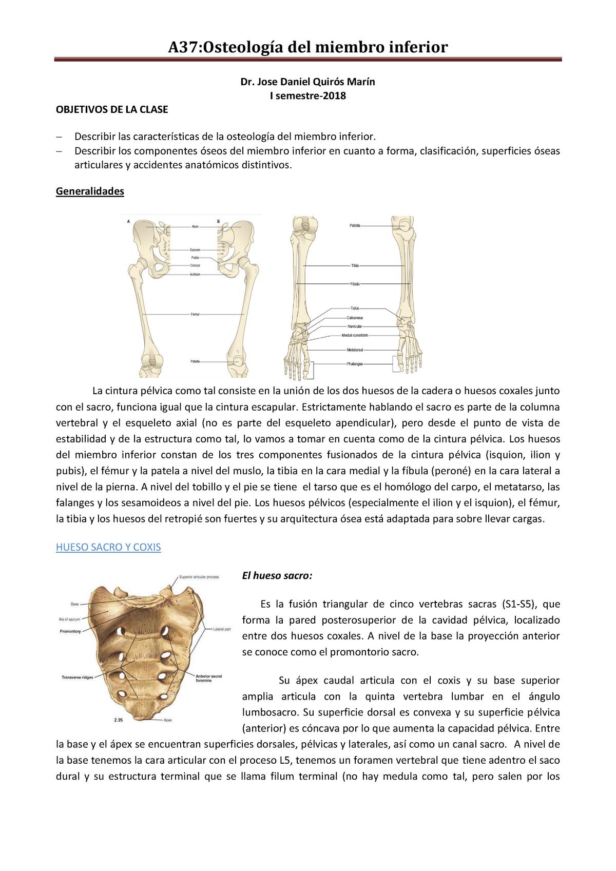 Osteocondroza articulației umărului de 1 grad