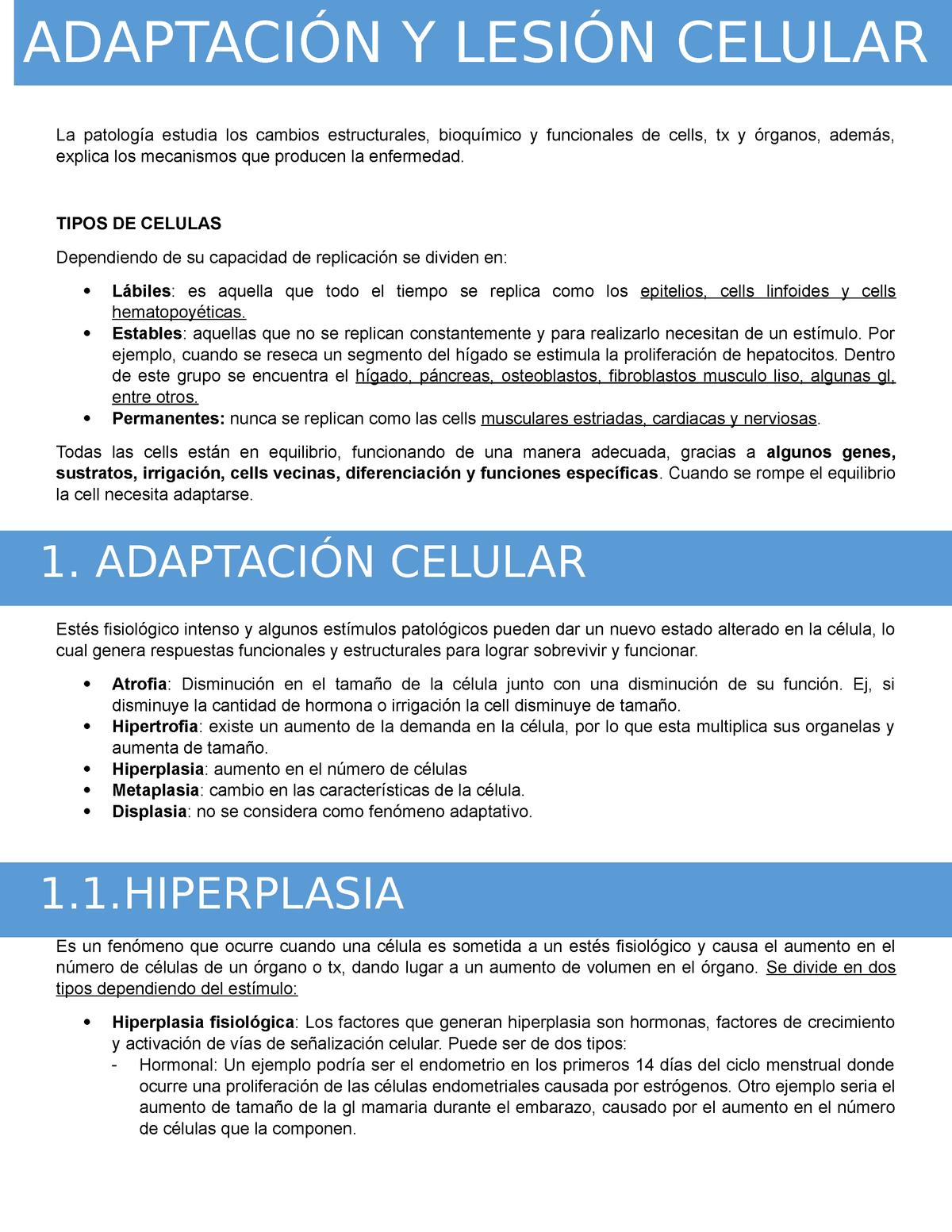 cáncer de próstata cilíndrico de células libres