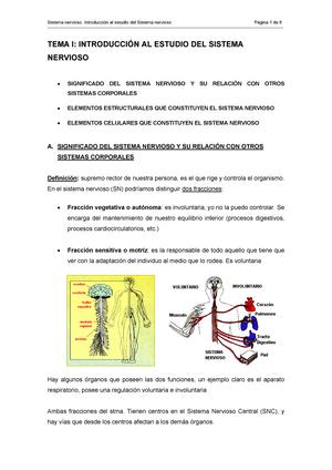 Resumen Fisiología: Introducción al estudio del Sistema nervioso ...