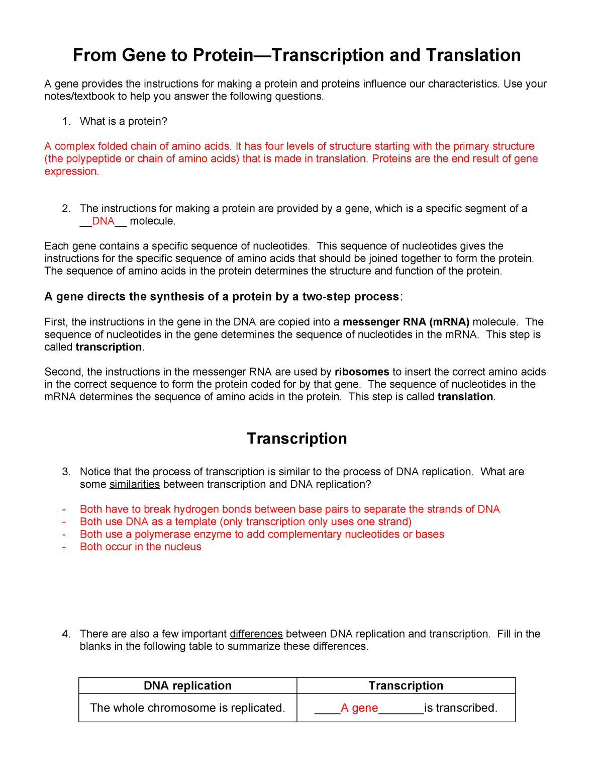 Transcription And Translation Practice Worksheet Answers ...