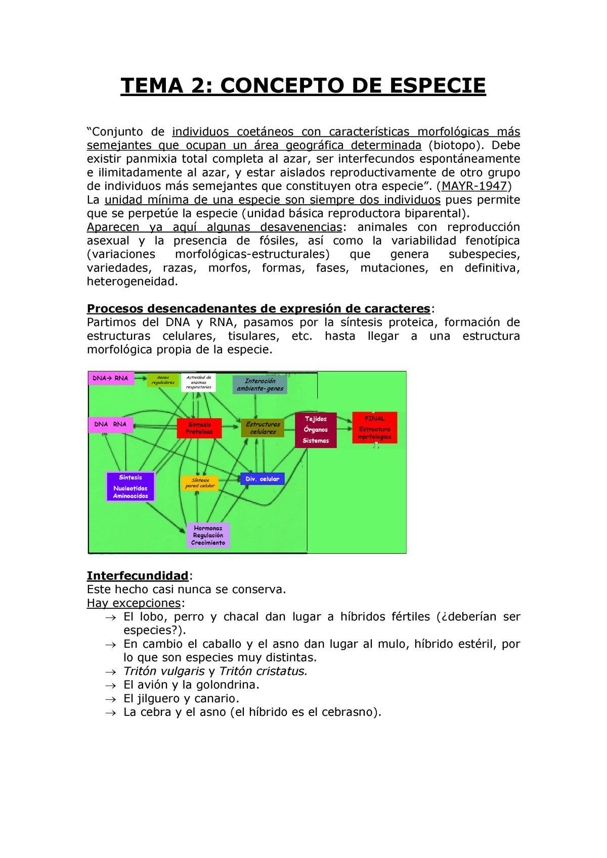 Tema 02 Concepto De Especie Zoología 801371 Ucm Studocu