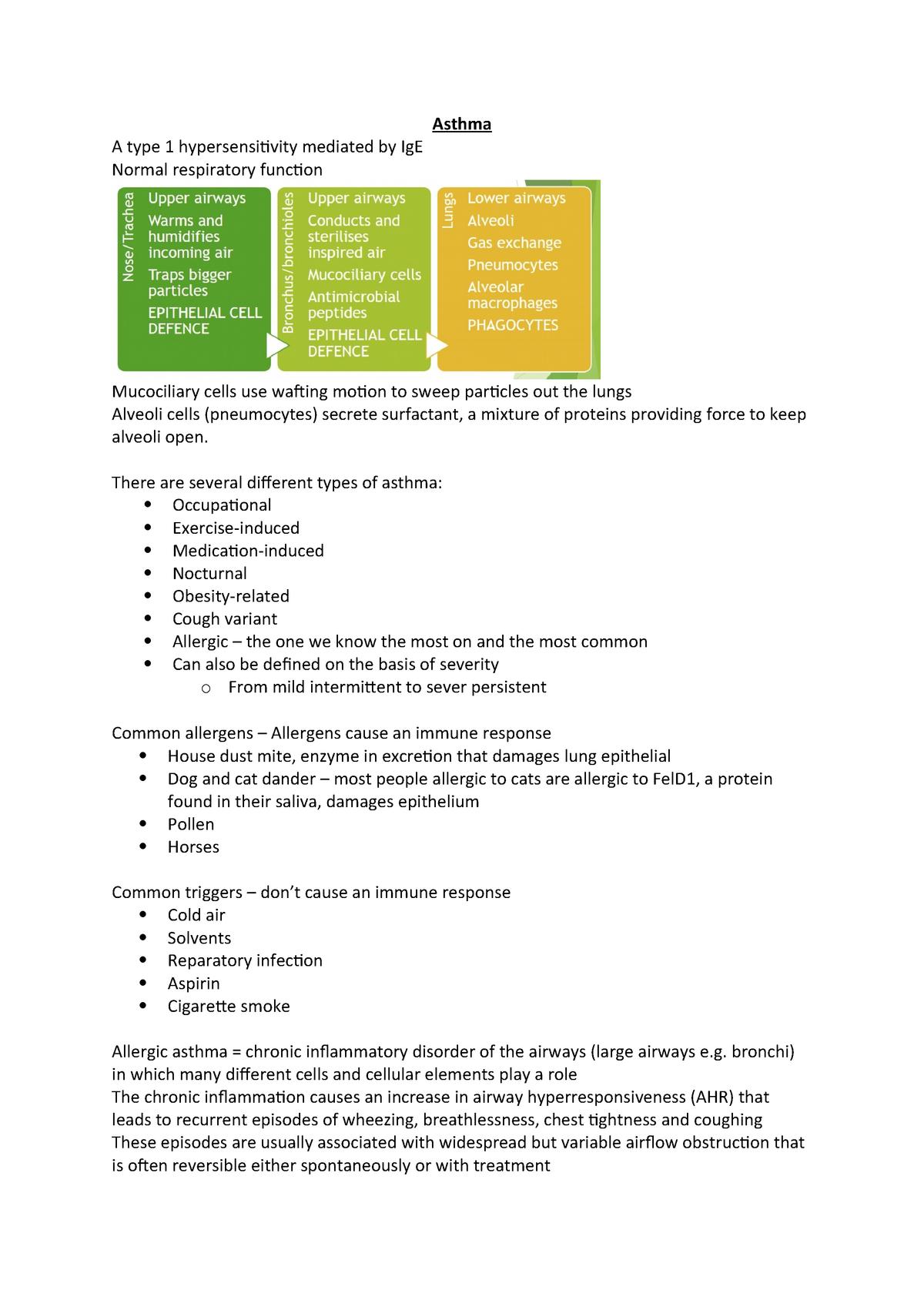 Asthma - BY3BD2: Biological Basis of Human Disease - StuDocu