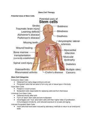 Stem Cell Therapy - Lecture notes 7 - BIOL3002 - Curtin