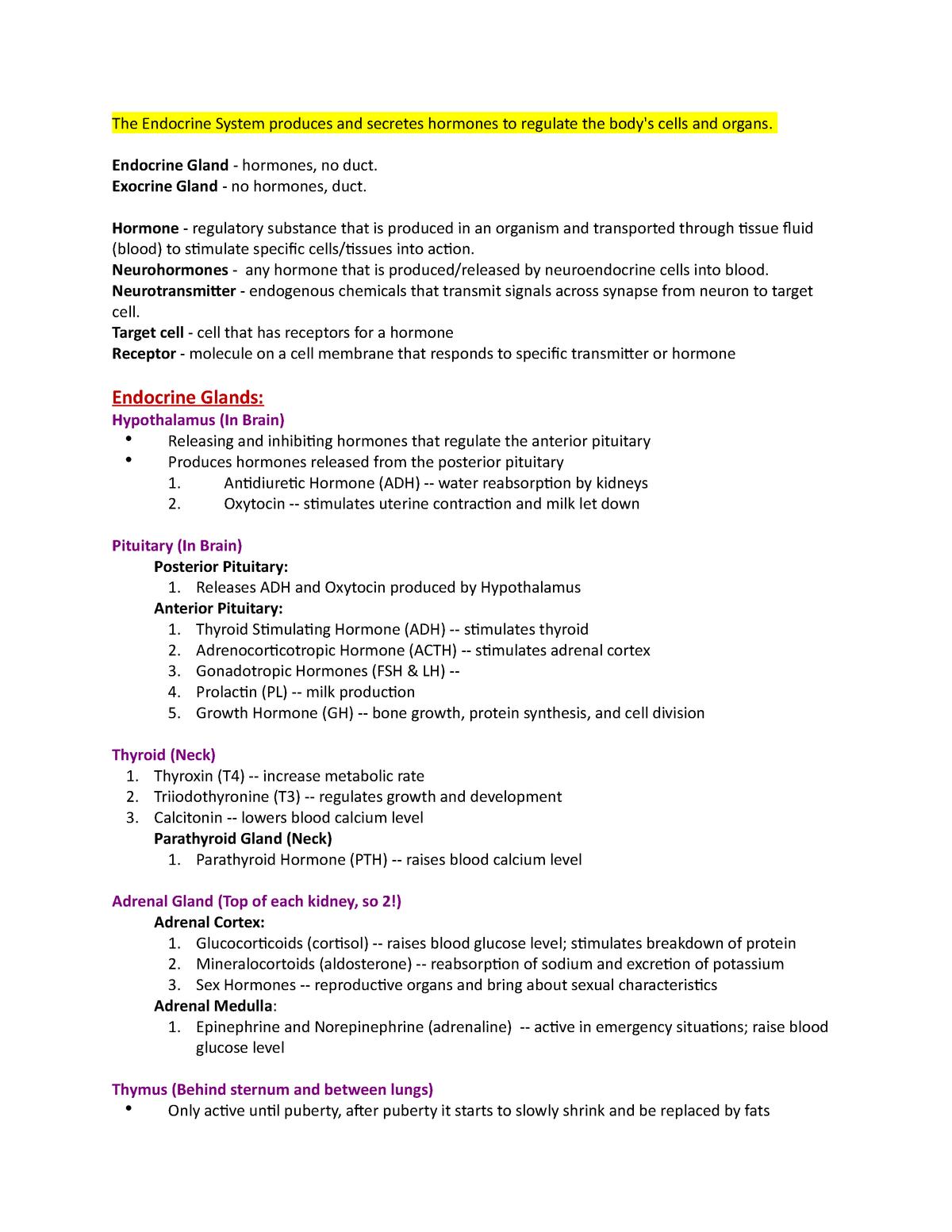 Endocrine System Phsl P 130 Human Biology Studocu