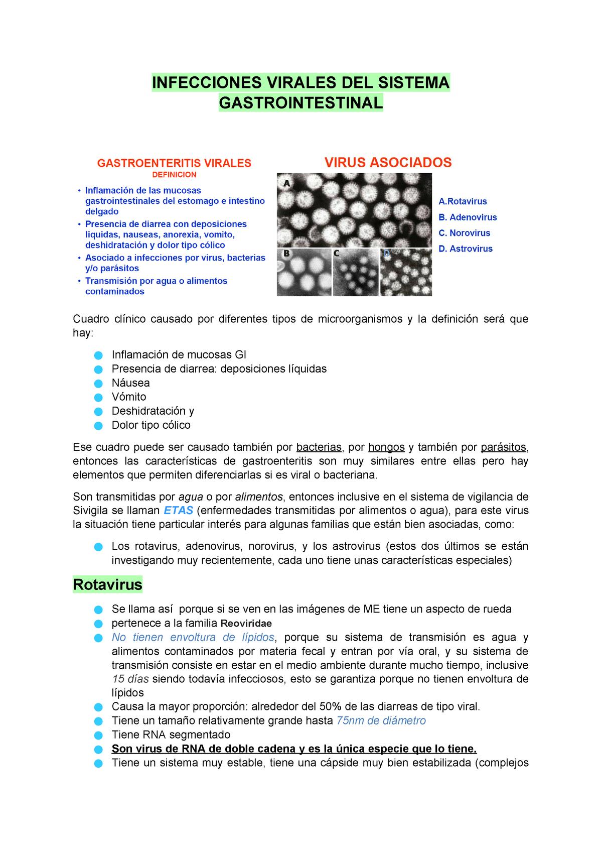 definicion de sistema viral