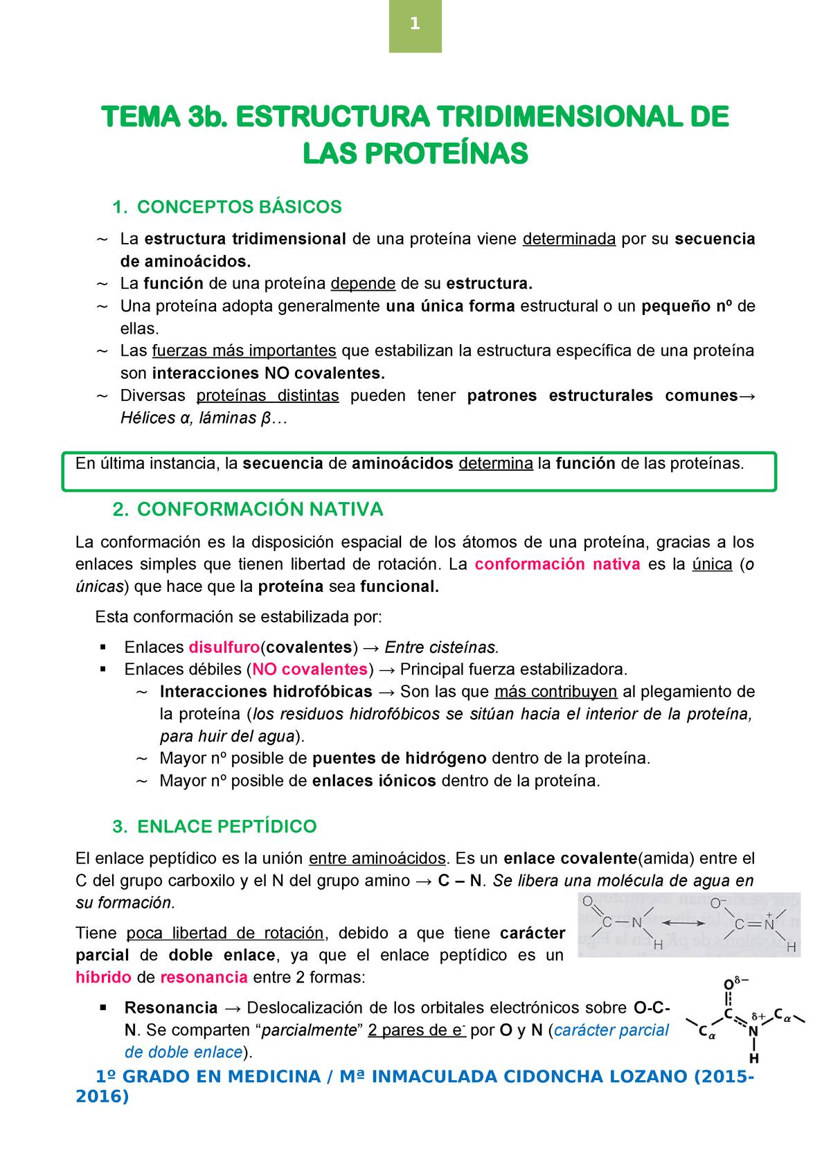 Tema 3b Estructura Tridimensional De Las Proteínas Uem